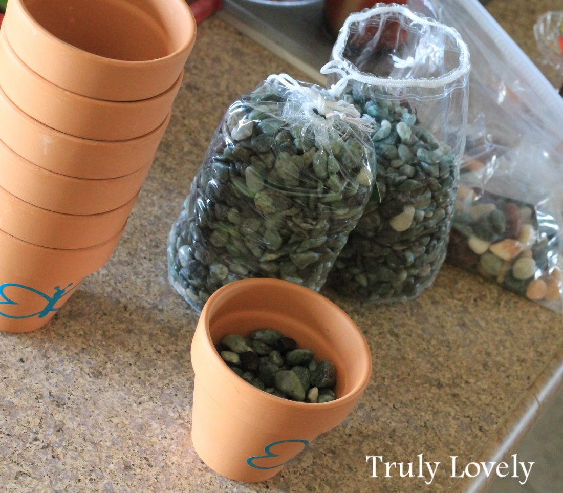 how to: flower pots with vinyl decorations and rocks