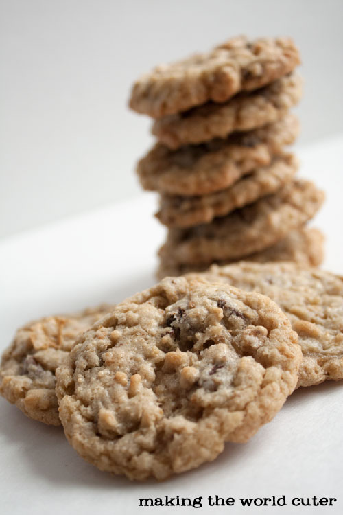 Cereal Crunch Oatmeal Chocolate Chip Cookies