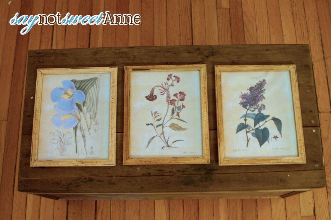 DIY Botanical Print | Pretty Paper