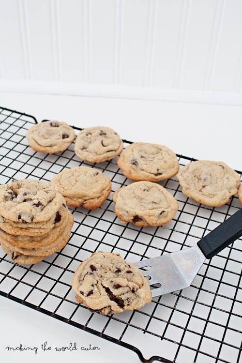 Simple, Delicious Basic Chocolate Chip Cookie Recipe