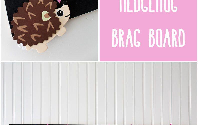 Adorable Light Up Hedgehog Brag Board