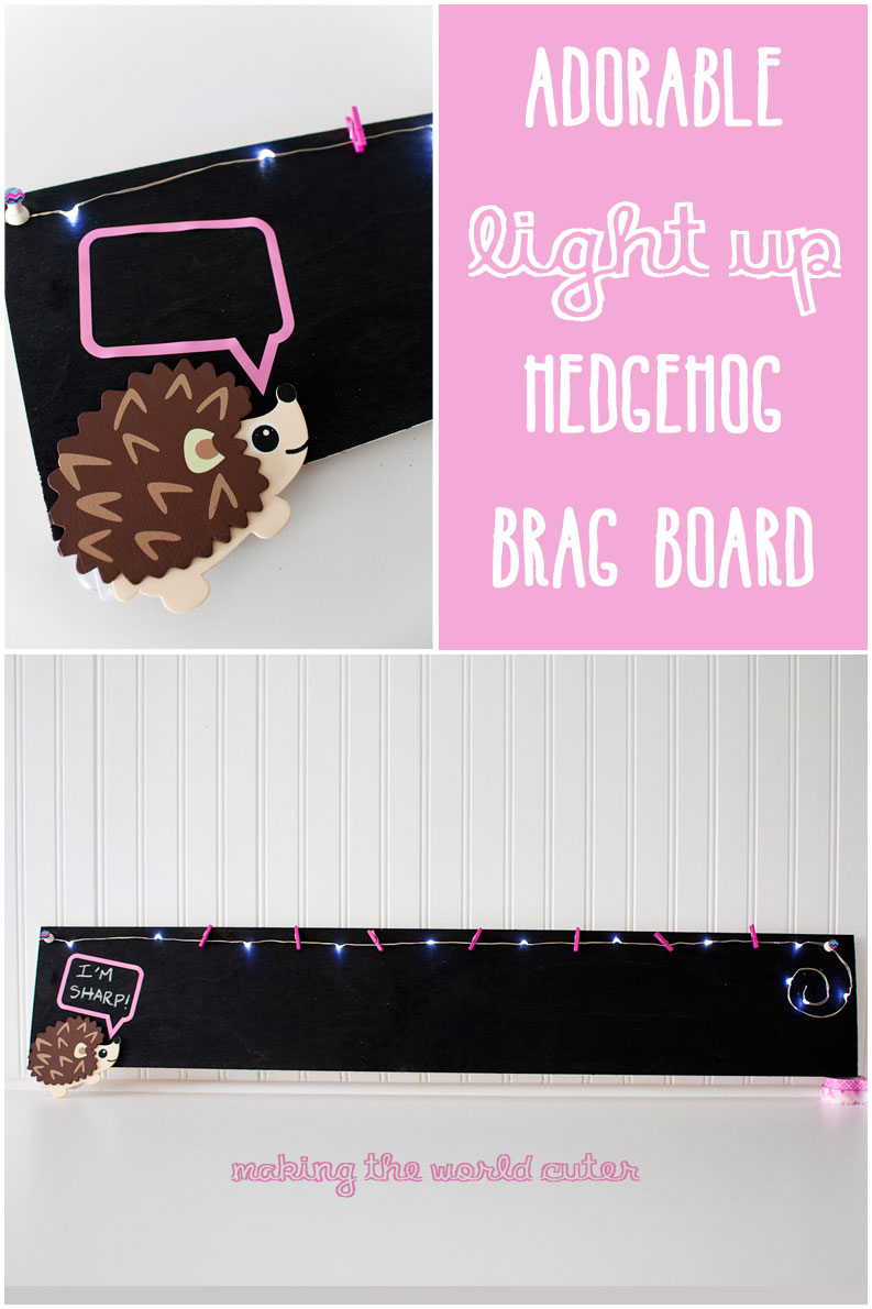 Adorable Light Up Hedgehog Brag Board