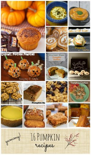 16 Yummy Pumpkin Recipes for fall