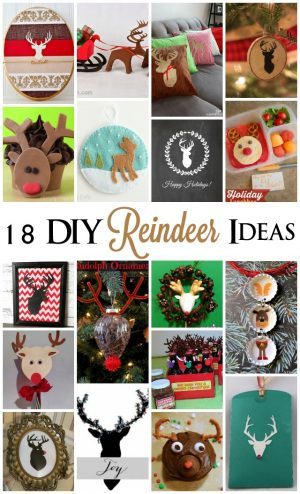 18 DIY Reindeer Ideas