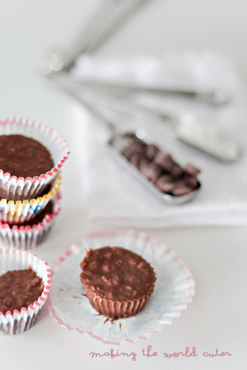 Making the World Cuter Chocolate Coconut No Bakes, just three ingredients! Yum!