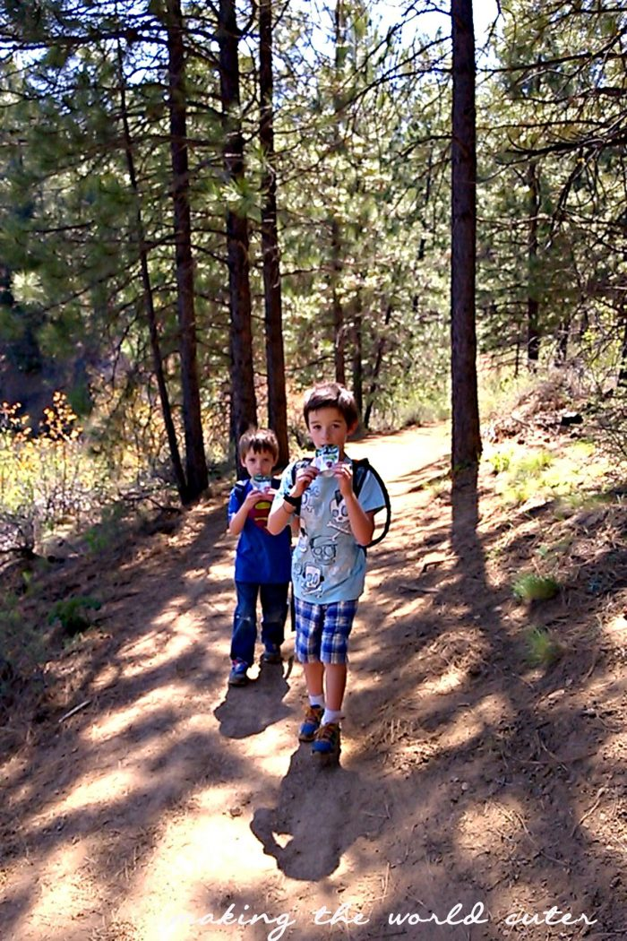 One of the best foods to take on a hike with kids is those applesauce pouches from Tree Top. They can eat them and still walk! #RaisingGoodApples