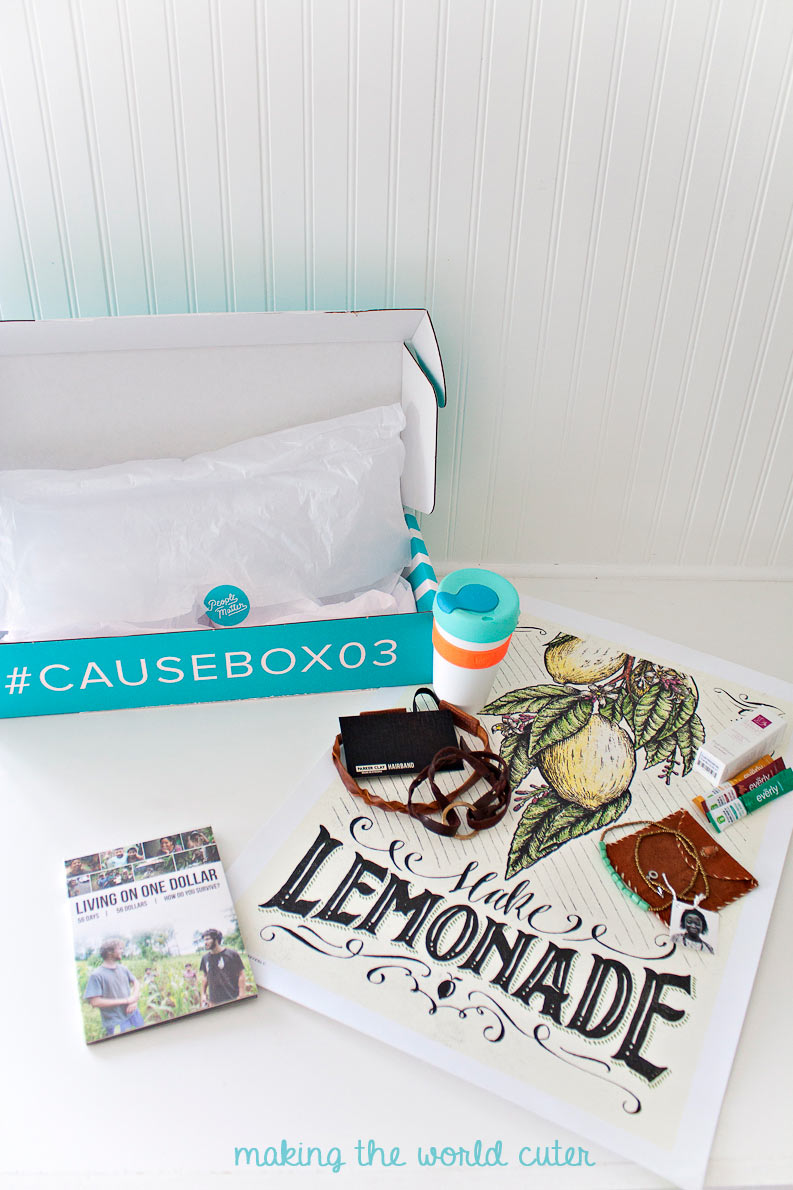 Summer CAUSEBOX Spoiler!