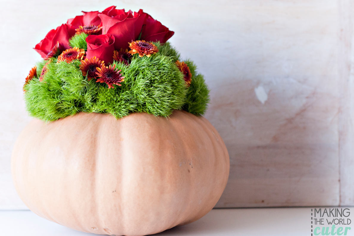 DIY Pumpkin Vase, perfect for fall, weddings, Thanksgiving centerpiece, or a pretty Halloween party.