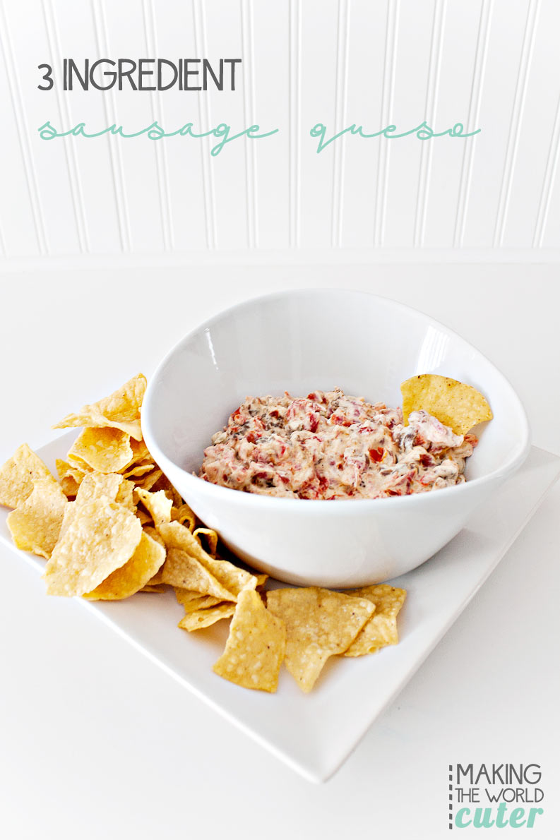 3 Ingredient Sausage Queso Dip