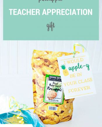 Pineapple Teacher Appreciation Gift with Free Printable Tag