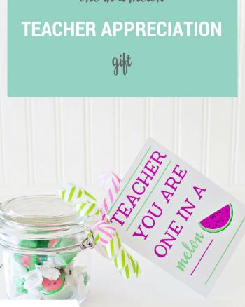 Teacher you are one in a melon gift idea
