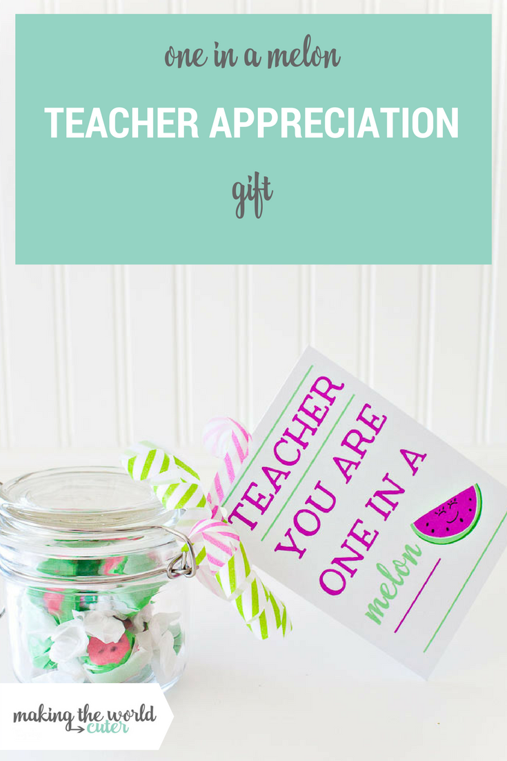 Teacher you are one in a melon gift idea