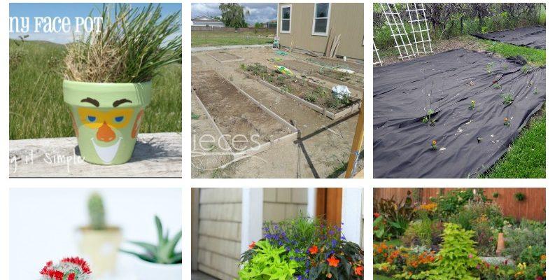 10 Fun Garden Ideas