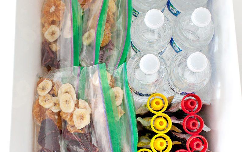 Pantry Snack Organizer