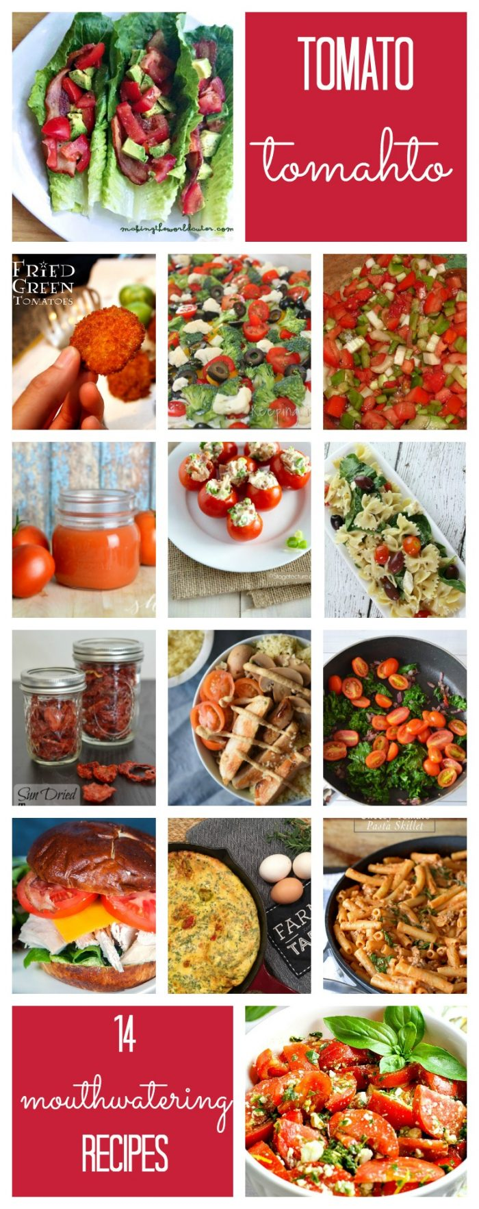 Tomato Tomahto! 14 mouthwatering recipes featuring our favorite identity confused fruit or is it veggie?