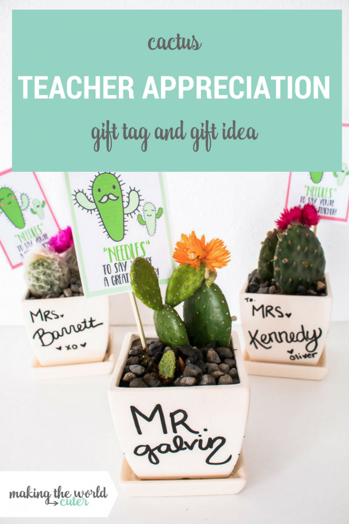 """Cactus Teacher Gift Idea with Free Printable """"Needles"""" to say you're a great teacher!"""