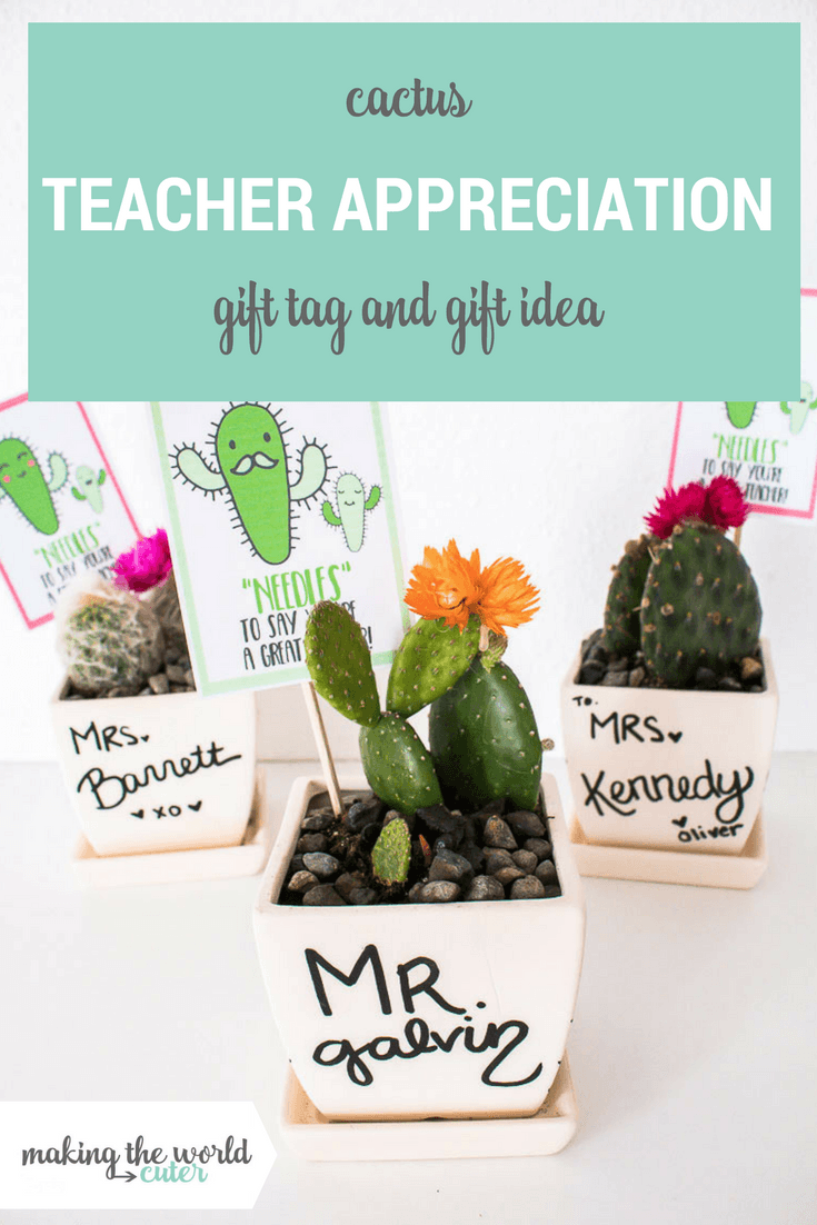 "Cactus Teacher Gift Idea with Free Printable ""Needles"" to say you're a great teacher!"