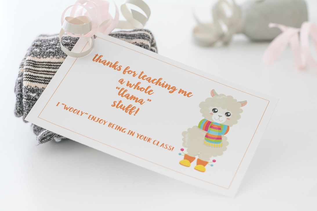 "Llama Teacher Appreciation Gift Idea with free printable tag. Thanks for teaching me a whole ""llama"" stuff! I ""wooly"" enjoy being in your class!"