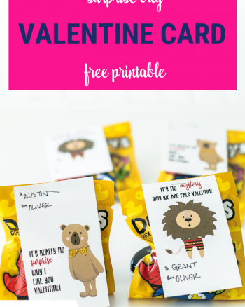 Valentine Printable Cards for Blind Bags and Surprise Toys