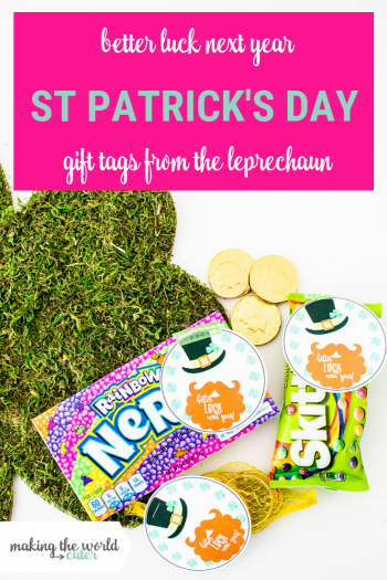 Free printable gift tags from the leprechaun-Better Luck Next Year! Perfect to add to a St Patrick's Day treat after the leprechaun escapes from the trap!