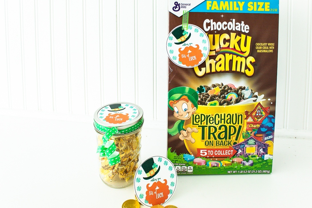 Leprechaun Gift Tags Free Printable for St Patricks Day